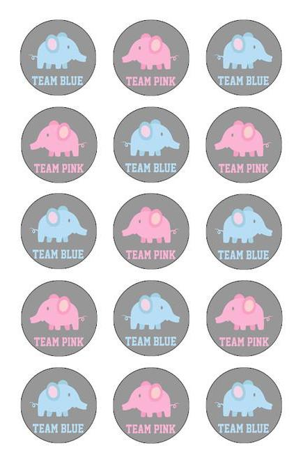 GENDER REVEAL BABY SHOWER CUPCAKE TOPPERS WAFER PAPER EDIBLE MULTIPLE DESIGNS